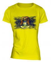 Michigan State Distressed Flag Ladies T-Shirt