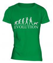 Airedale Terrier Evolution Ladies T-Shirt