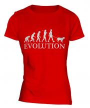 American Bulldog Evolution Ladies T-Shirt