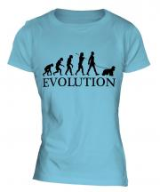 American Cocker Spaniel Evolution Ladies T-Shirt