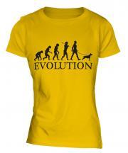 Staffordshire Terrier Evolution Ladies T-Shirt