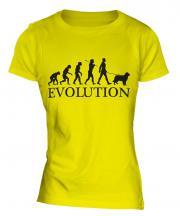 Australian Shepherd Evolution Ladies T-Shirt