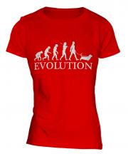 Basset Hound Evolution Ladies T-Shirt