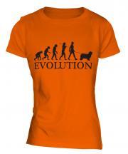 Bearded Collie Evolution Ladies T-Shirt