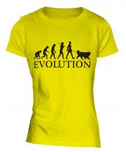 Bernese Mountain Dog Evolution Ladies T-Shirt