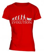 Bernese Mountain Dog Evolution Ladies T-Shirt