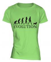 Welsh Corgi Evolution Ladies T-Shirt