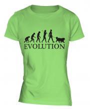 Clumber Spaniel Evolution Ladies T-Shirt