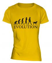 Curly-Coated Retriever Evolution Ladies T-Shirt