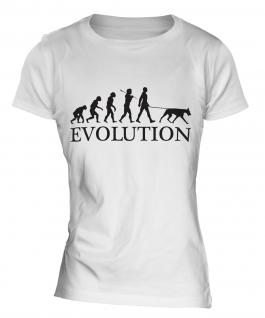 Doberman Pinscher Evolution Ladies T-Shirt