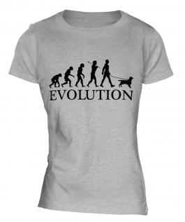 English Cocker Spaniel Evolution Ladies T-Shirt