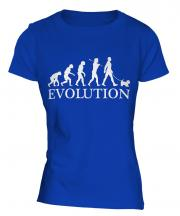 Glen Of Imaal Terrier Evolution Ladies T-Shirt