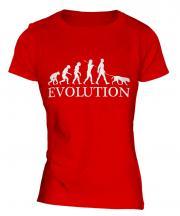 Golden Retriever Evolution Ladies T-Shirt