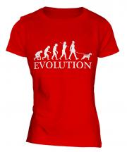 Irish Terrier Evolution Ladies T-Shirt