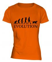 Irish Wolfhound Evolution Ladies T-Shirt