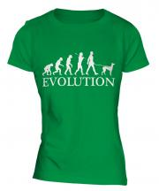 Italian Greyhound Evolution Ladies T-Shirt