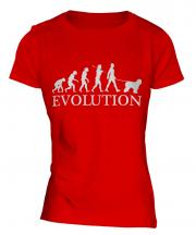 Old English Sheepdog Evolution Ladies T-Shirt