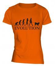 Samoyed Evolution Ladies T-Shirt