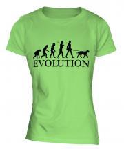 Scottish Deerhound Evolution Ladies T-Shirt