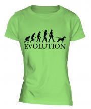 Schnauzer Evolution Ladies T-Shirt