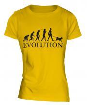 Swedish Vallhund Evolution Ladies T-Shirt