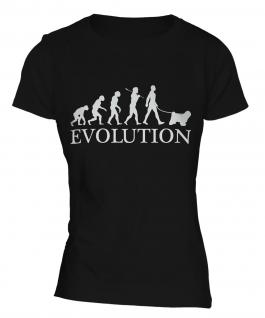 Tibetan Terrier Evolution Ladies T-Shirt