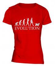 Tibetan Terrier Evolution Ladies T-Shirt