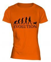 Welsh Springer Spaniel Evolution Ladies T-Shirt