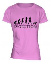American Staffordshire Terrier Evolution Ladies T-Shirt