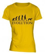 Whippet Evolution Ladies T-Shirt