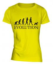 Wire Fox Terrier Evolution Ladies T-Shirt