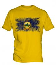 Vermont State Distressed Flag Mens T-Shirt