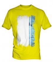 Altai Republic Grunge Flag Mens T-Shirt