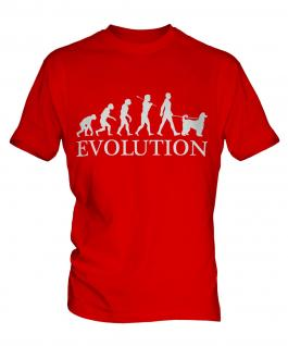 Afghan Hound Evolution Mens T-Shirt