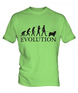 Bearded Collie Evolution Mens T-Shirt