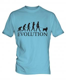 Springer Spaniel Evolution Mens T-Shirt