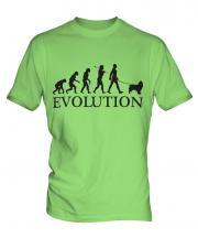 Springer Spaniel Evolution Mens T-Shirt