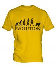 Old English Sheepdog Evolution Mens T-Shirt