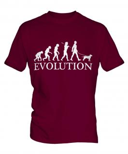 American Staffordshire Terrier Evolution Mens T-Shirt