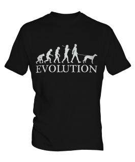 Whippet Evolution Mens T-Shirt