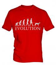 Whippet Evolution Mens T-Shirt