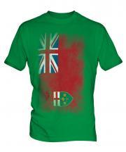 Ontario Faded Flag Mens T-Shirt