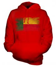 Benin Distressed Flag Unisex Adult Hoodie
