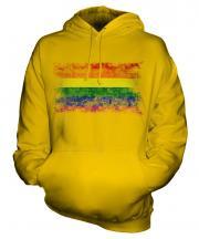 Gay Pride Distressed Flag Unisex Adult Hoodie