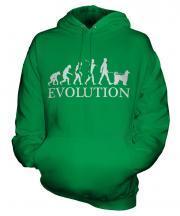 Afghan Hound Evolution Unisex Adult Hoodie