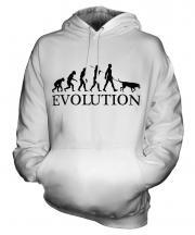 Beauceron Evolution Unisex Adult Hoodie