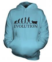Bernese Mountain Dog Evolution Unisex Adult Hoodie