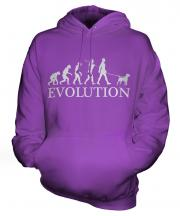 Border Terrier Evolution Unisex Adult Hoodie