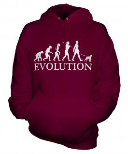 Boston Terrier Evolution Unisex Adult Hoodie