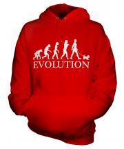 Glen Of Imaal Terrier Evolution Unisex Adult Hoodie
